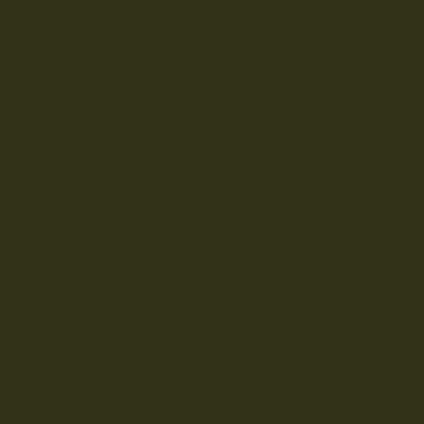 Olive 100 ml - Annie Sloan Chalk Paint - farveprøve
