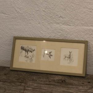 Billede - byanttegninger af dyremotiver 36x16 cm