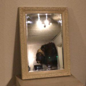 Nyere romantisk spejl råhvid 51x71x3 cm