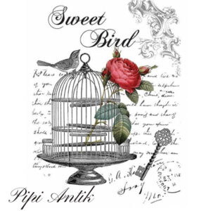 Cadence Transfer Sweet Bird 25x35 cm HDT-002
